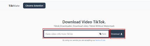 download video tanpa watermark menggunakan Tikmate.online